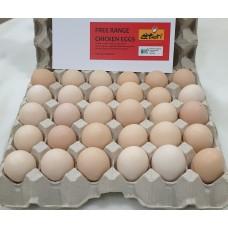 Etori Free Range Chicken Eggs (30's)