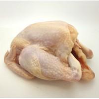 Etori Free Range Chicken (XXL)